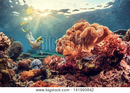 Young lady snorkeling over coral reef in the tropical sea. Bali island