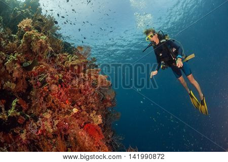 Lady scuba diver exploring the coral reef in a tropical sea