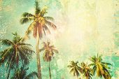 Tropical Palm Tree Sun Shine Holiday Travel Design poster