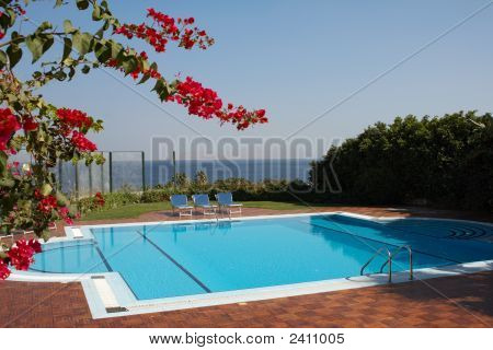 Red Flowers And Swimming Pool