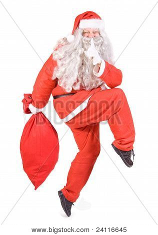 Santa Claus with Chistmas bag