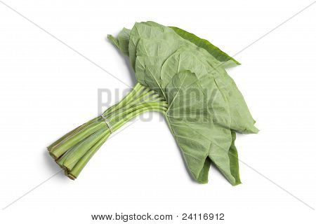 Bunch Fresh Taro Leaves
