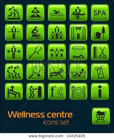 Wellness center icons set