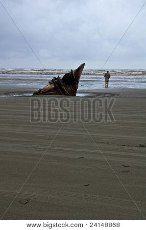 Large Driftwood And Man Beach Scene At Moclips, Washington