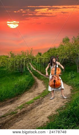 Beautiful Girl Playing The Cello
