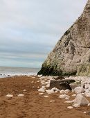 Botany Bay Cliff And Loose Rocks By Sea poster