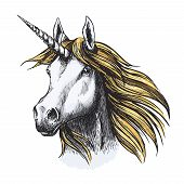 Unicorn Or Fairy Tale Horse Sketch Icon. Vector Muzzle Or Head Of Magic And Mystic Horse With Horn A poster