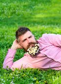 Man With Beard On Calm Face Enjoy Nature. Relaxation Concept. Hipster With Bouquet Of Daisies In Bea poster