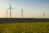 Wind Energy Turbines Field With Blue Sky, Renewable Electric Energy Source, Green Energy Nature Frie poster