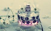 Female Perfume poster