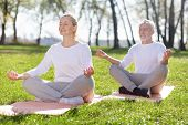 Yoga Class. Joyful Peaceful People Sitting In The Lotus Pose While Practicing Yoga Outdoors poster