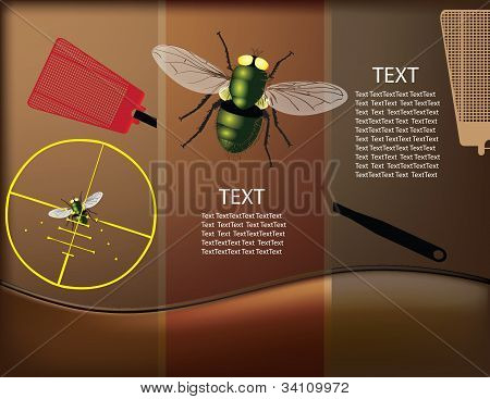 Destruction Of Insects
