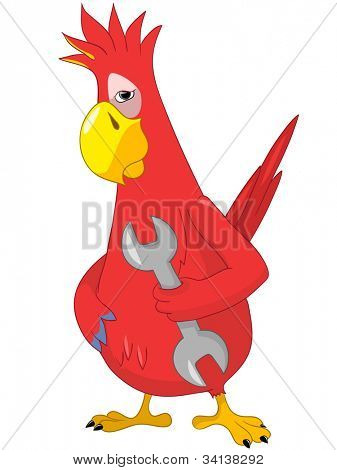 Cartoon Character Funny Parrot Isolated on White Background. Support. Vector EPS 10.
