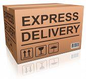 Постер, плакат: Экспресс картонной коробке Специальные перевозки онлайн Интернет порядок доставки от Интернет магазина