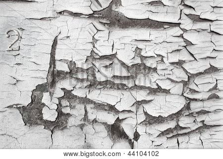 White Texture Of Stucco Wall