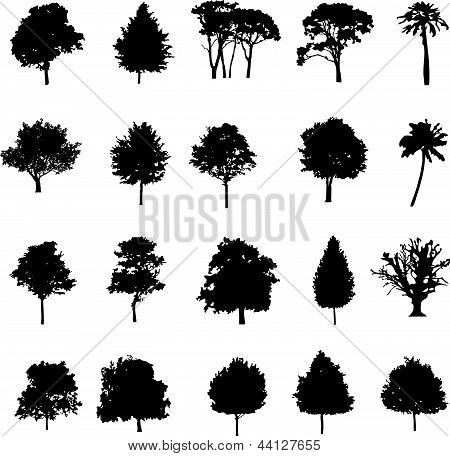 Tree Black Vector Silhouette Illustration.eps