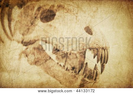 Spooky skull diabolical creatures. Vintage styled background