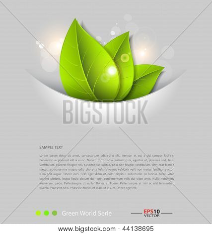 Fresh leaves vector background template