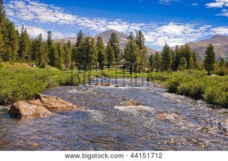 Toulumne meadows, Yosemite National park, California