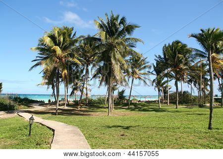 Cayo Coco Cuba scenic