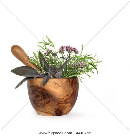 Rosemary, Sage And Marjoram Herbs