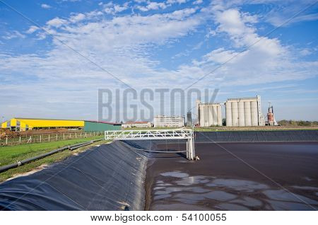 Liquid cow manure
