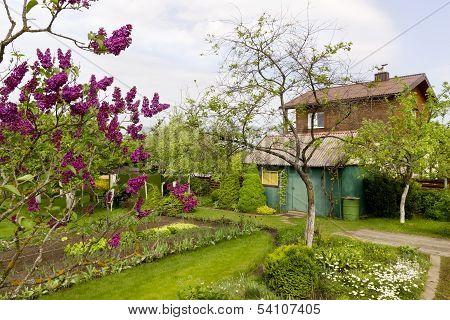 Wakening Garden