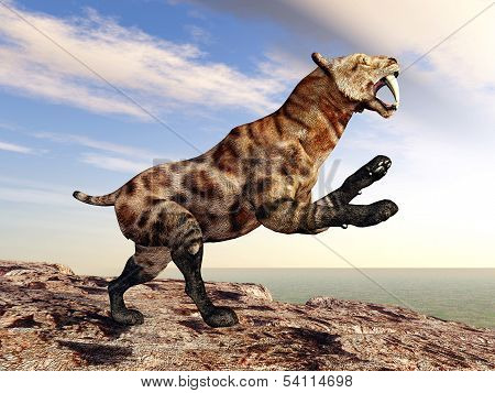 The Smilodon