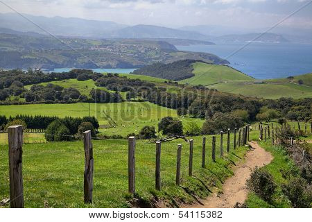 Green Fields On Biscay Coast Near Gorliz, Basque Country, Spain
