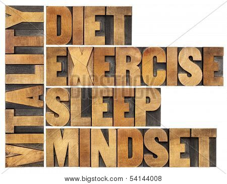 diet, sleep, exercise and mindset - vitality concept - isolated word abstract in vintage letterpress wood type