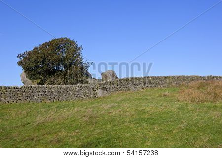 Dry Stone Walls And Holly