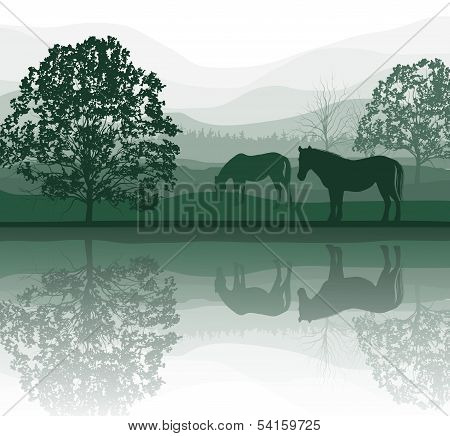 Horses on a Meadow with Trees and lake