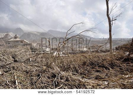 Village Damaged by Pyroclastic