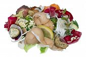 picture of dump  - Garbage dump food waste isolated concept shot - JPG