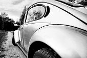 stock photo of beetle car  - Beetle  - JPG