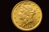 picture of twenty dollars  - Twenty Liberty golden dollar coin - JPG