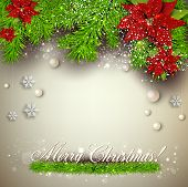 picture of christmas flower  - Elegant  background with Christmas garland - JPG