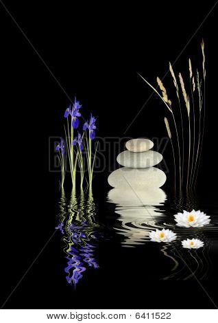 Zen Garden Fantasy