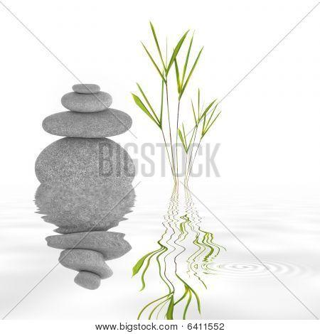 Zen Garden Tranquility