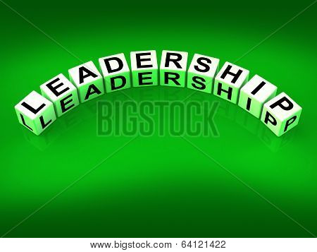 Leadership Dice Mean Guidance Influence And Management