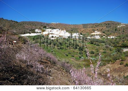 White village in countryside, Daimalos, Spain.