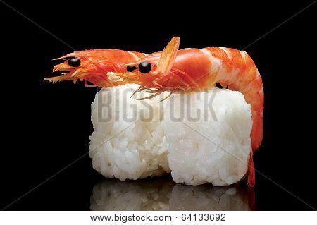 Joy Shrimp