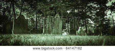 Old Cemeteries - Ground View Panorama