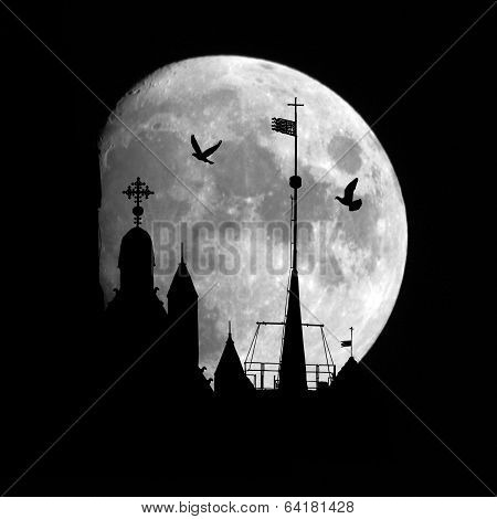 Castle and birds on the moon background