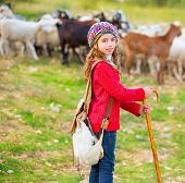 stock photo of shepherdess  - Kid girl shepherdess happy with flock of sheep and wooden stick in Spain - JPG