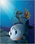 pic of piranha  - Illustration of a scary piranha near the rocks on a white background - JPG