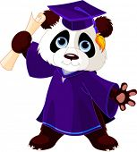 image of panda  - Illustration of cute panda graduates - JPG
