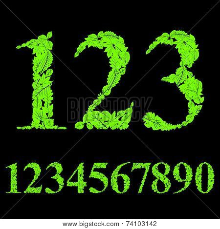 Floral numbers made with leaves, natural numerals set, design.