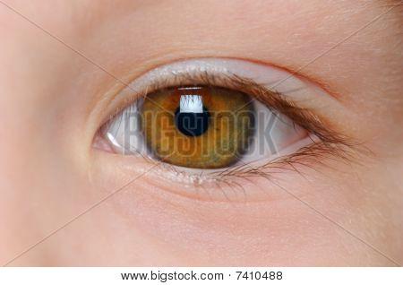 closeup view of childish right eye