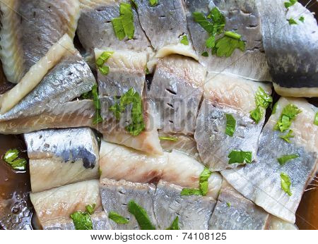 Fillet Of A Herring
